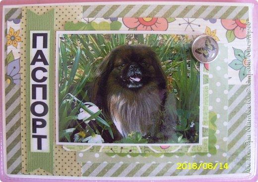 Обложка на паспорт с изображением домашнего любимца (фото) фото 1