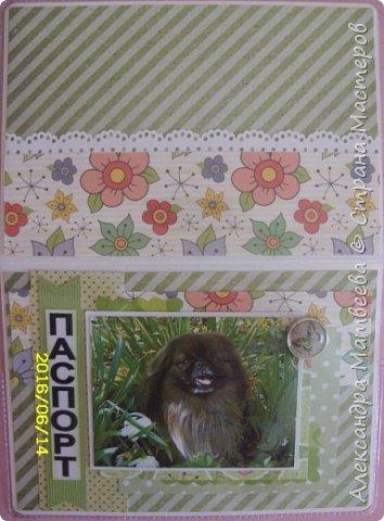 Обложка на паспорт с изображением домашнего любимца (фото) фото 2