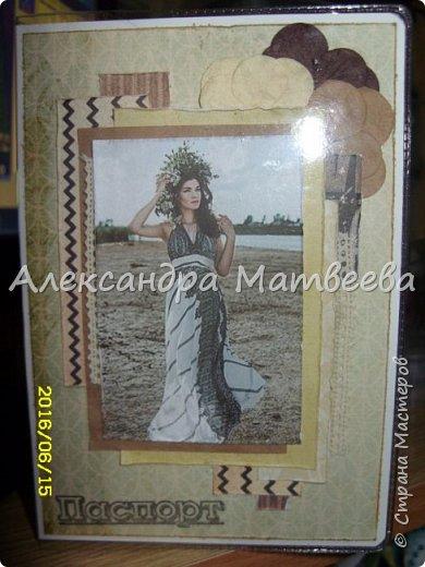 Обложка на паспорт с изображением домашнего любимца (фото) фото 6
