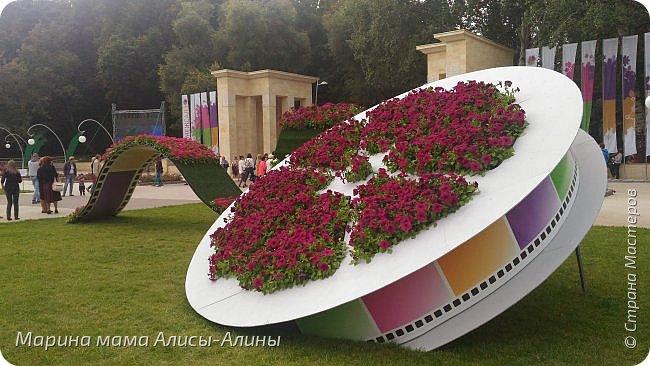 В начале сентября мы опять побывали на выставке Воронеж город сад!В этом году она была 4 дня!Очень понравилось!Мы два дня там гуляли! Самое любимое детьми-это прыгать по сену! фото 5