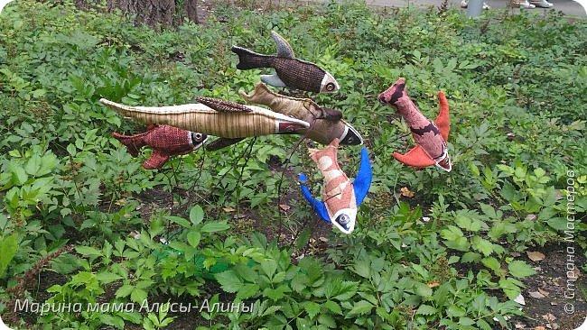 В начале сентября мы опять побывали на выставке Воронеж город сад!В этом году она была 4 дня!Очень понравилось!Мы два дня там гуляли! Самое любимое детьми-это прыгать по сену! фото 24
