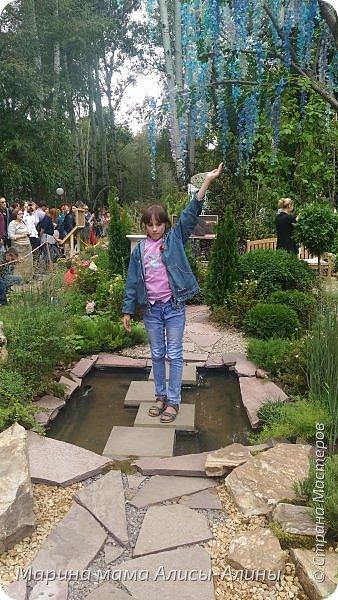В начале сентября мы опять побывали на выставке Воронеж город сад!В этом году она была 4 дня!Очень понравилось!Мы два дня там гуляли! Самое любимое детьми-это прыгать по сену! фото 27