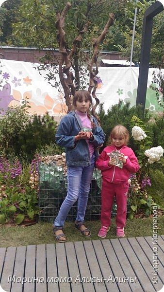 В начале сентября мы опять побывали на выставке Воронеж город сад!В этом году она была 4 дня!Очень понравилось!Мы два дня там гуляли! Самое любимое детьми-это прыгать по сену! фото 31