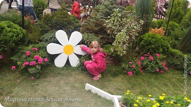 В начале сентября мы опять побывали на выставке Воронеж город сад!В этом году она была 4 дня!Очень понравилось!Мы два дня там гуляли! Самое любимое детьми-это прыгать по сену! фото 42