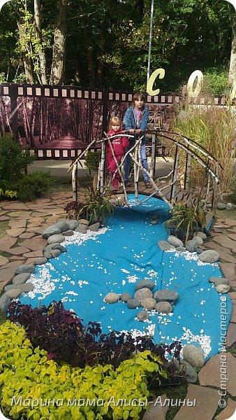 В начале сентября мы опять побывали на выставке Воронеж город сад!В этом году она была 4 дня!Очень понравилось!Мы два дня там гуляли! Самое любимое детьми-это прыгать по сену! фото 44