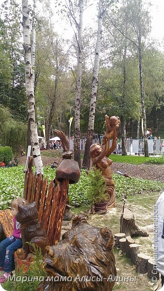 В начале сентября мы опять побывали на выставке Воронеж город сад!В этом году она была 4 дня!Очень понравилось!Мы два дня там гуляли! Самое любимое детьми-это прыгать по сену! фото 51