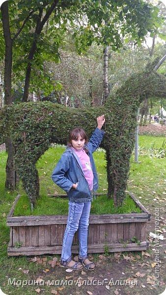 В начале сентября мы опять побывали на выставке Воронеж город сад!В этом году она была 4 дня!Очень понравилось!Мы два дня там гуляли! Самое любимое детьми-это прыгать по сену! фото 53