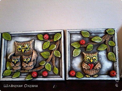 Доброго времени суток,Страна Мастеров!В одном из блогов я обещала продолжение с совами,ну вот доделала наконец своих пернатых.Рамки покупались сто лет тому назад,то гербарий там был,то пыталась нарисовать котов, висели в них мои художества,ну вот, стёкла на выброс,будут совы)))Сов много не бывает,совомания охватывает страну на ряду с кото- и петухоманией.Вот эти пять будут висеть в рядок,вернее уже висят. фото 4