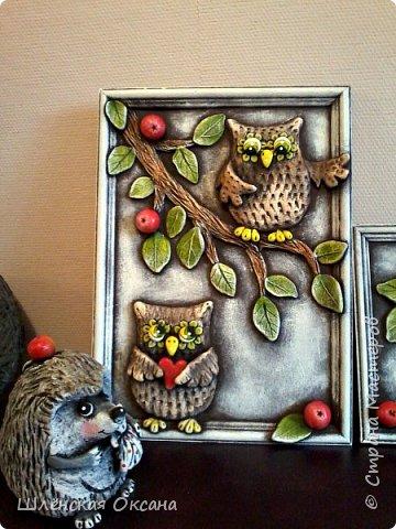 Доброго времени суток,Страна Мастеров!В одном из блогов я обещала продолжение с совами,ну вот доделала наконец своих пернатых.Рамки покупались сто лет тому назад,то гербарий там был,то пыталась нарисовать котов, висели в них мои художества,ну вот, стёкла на выброс,будут совы)))Сов много не бывает,совомания охватывает страну на ряду с кото- и петухоманией.Вот эти пять будут висеть в рядок,вернее уже висят. фото 3
