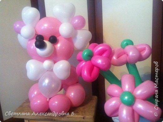 мишка из шаров фото 2
