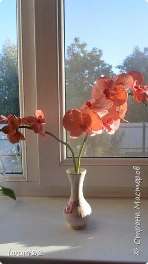 осенние ободки на моих красотках! ягодки из хф фото 6