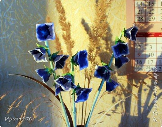 МК здесь http://www.avatarochki.ru/animated_show/bellflower/#.V_IYHfTBYxI фото 6