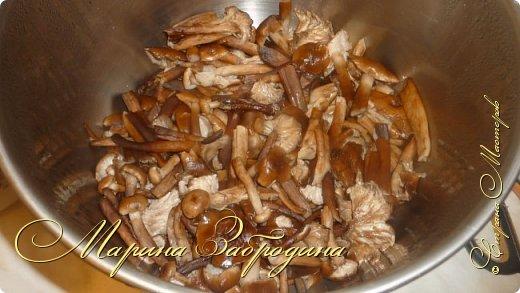 Опята – один из самых вкусных видов грибов, основной урожай которых приходится именно на начало-середину осени. Собрав большую корзинку грибов, их хочется не просто пожарить, но и заготовить на зиму. Сегодня расскажу свой рецепт консервирования опят.  Будьте внимательны: опята можно спутать с ложными опятами – ядовитыми грибами. Главные отличия ядовитых грибов: по окраске они намного ярче съедобных, на шляпке отсутствуют чешуйки. Съедобные опята также имеют на ножке кольцо-манжетку. фото 4