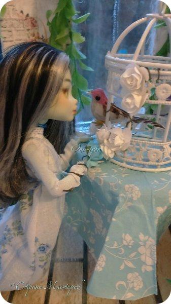 """Это 2 работа на этот конкурс.  В этот раз Ферри у меня """"королева"""" роз, все к чему она прикоснется оплетается розами>~< фото 2"""