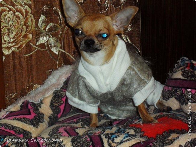 Привет страна мастеров,скоро зима,холода,подруга принесла пакет шарфов,вот что нашилось)))) фото 2