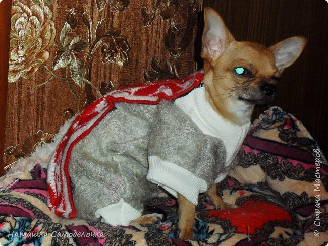 Привет страна мастеров,скоро зима,холода,подруга принесла пакет шарфов,вот что нашилось)))) фото 3