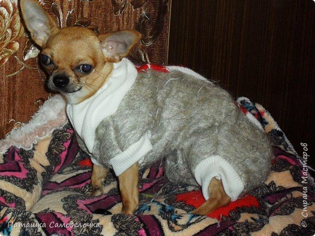 Привет страна мастеров,скоро зима,холода,подруга принесла пакет шарфов,вот что нашилось)))) фото 1
