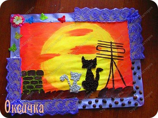 Коты на крыше фото 1