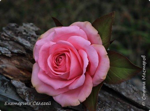 заколка с розой из фоамирана фото 1