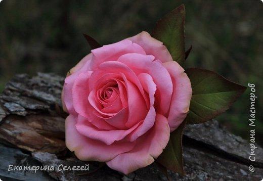 заколка с розой из фоамирана фото 2