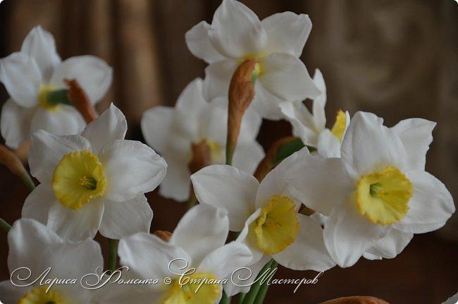 А у меня - Весна !!!  Нарциссы из полимерной глины.  Нарциссы у меня уже были, это повтор, они будут добавлены в два разных букета.   фото 1