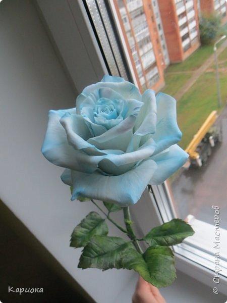 И снова здравствуйте! Наконец я  ее осилила!!!!! Попросили  для подарка сделать розу. Ну все бы ничего - но ее надо было сделать в сине-голубых тонах... Честно говоря - тяжеловато мне это далось. Ну вот что получилось судить вам! фото 1