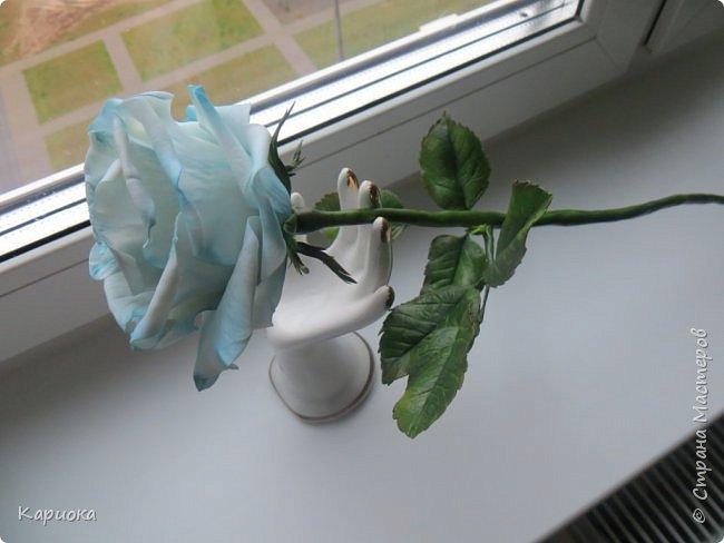 И снова здравствуйте! Наконец я  ее осилила!!!!! Попросили  для подарка сделать розу. Ну все бы ничего - но ее надо было сделать в сине-голубых тонах... Честно говоря - тяжеловато мне это далось. Ну вот что получилось судить вам! фото 9