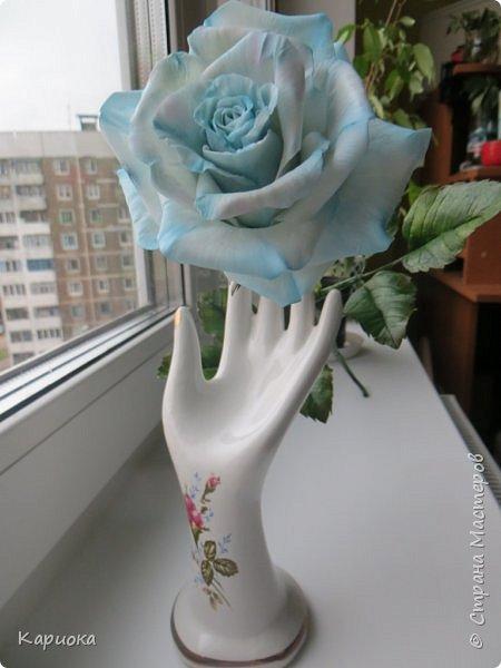 И снова здравствуйте! Наконец я  ее осилила!!!!! Попросили  для подарка сделать розу. Ну все бы ничего - но ее надо было сделать в сине-голубых тонах... Честно говоря - тяжеловато мне это далось. Ну вот что получилось судить вам! фото 12
