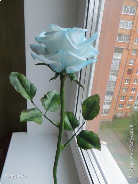 И снова здравствуйте! Наконец я  ее осилила!!!!! Попросили  для подарка сделать розу. Ну все бы ничего - но ее надо было сделать в сине-голубых тонах... Честно говоря - тяжеловато мне это далось. Ну вот что получилось судить вам! фото 13