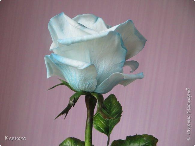 И снова здравствуйте! Наконец я  ее осилила!!!!! Попросили  для подарка сделать розу. Ну все бы ничего - но ее надо было сделать в сине-голубых тонах... Честно говоря - тяжеловато мне это далось. Ну вот что получилось судить вам! фото 14