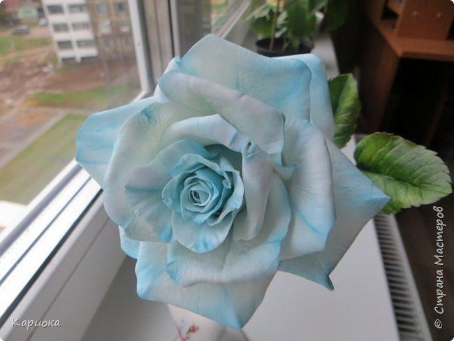 И снова здравствуйте! Наконец я  ее осилила!!!!! Попросили  для подарка сделать розу. Ну все бы ничего - но ее надо было сделать в сине-голубых тонах... Честно говоря - тяжеловато мне это далось. Ну вот что получилось судить вам! фото 7