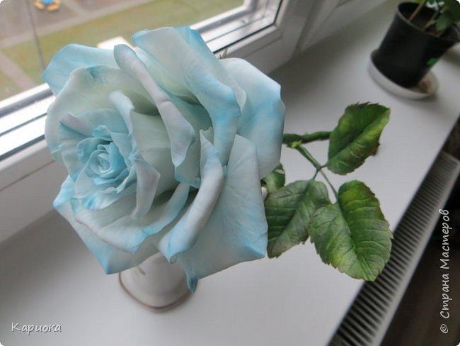 И снова здравствуйте! Наконец я  ее осилила!!!!! Попросили  для подарка сделать розу. Ну все бы ничего - но ее надо было сделать в сине-голубых тонах... Честно говоря - тяжеловато мне это далось. Ну вот что получилось судить вам! фото 8
