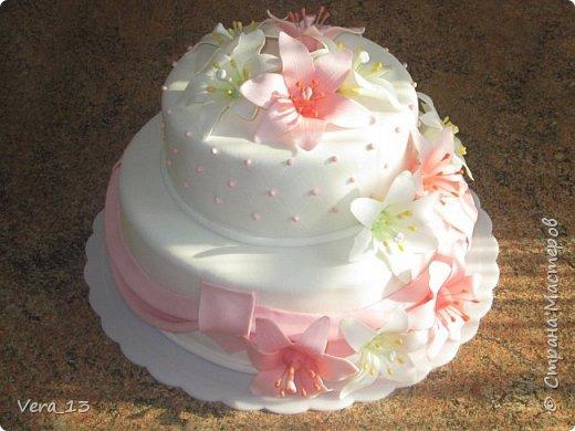 Привет, Страна! Накопились тортики, давно не выкладывала. Приглашаю в гости) Приятного просмотра) Очень много стали заказывать с фруктами. фото 5