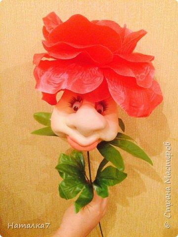 Весёлые цветочки фото 3