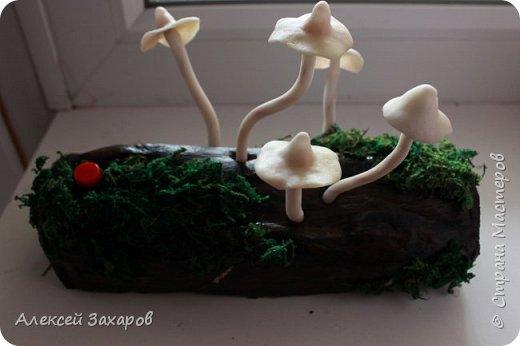 Ночник грибочки,осенняя пора и грибной сезон вдохновили на вот такой ночник фото 1