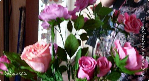 Здравствуйте уважаемые жители СМ. Вот решила вам показать мои цветочки.  фото 2