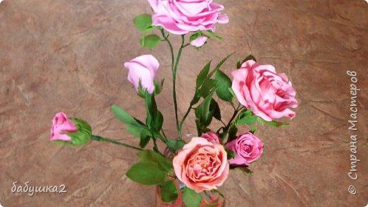 Здравствуйте уважаемые жители СМ. Вот решила вам показать мои цветочки.  фото 3
