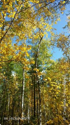 Доброго времени суток жители Страны. Хочется поделиться с вами прогулкой на день города Якутска.Погода нас нынче балует. Тепло. Это мои внучки. Младшая Катюша, старшая Лиза фото 8