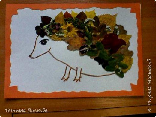 Осенний ёжик.