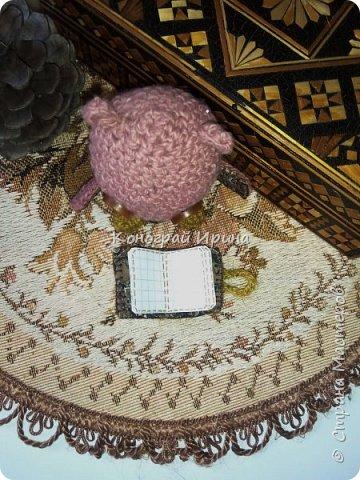 Совенок амигуруми из остатков пряжи. Высота 9 см. В книжке страницы бумажные, в клеточку.  фото 6