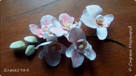 Орхидея из мастики  фото 1