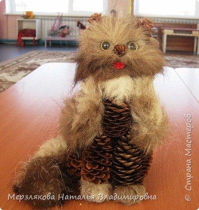 Лесной кот Манул