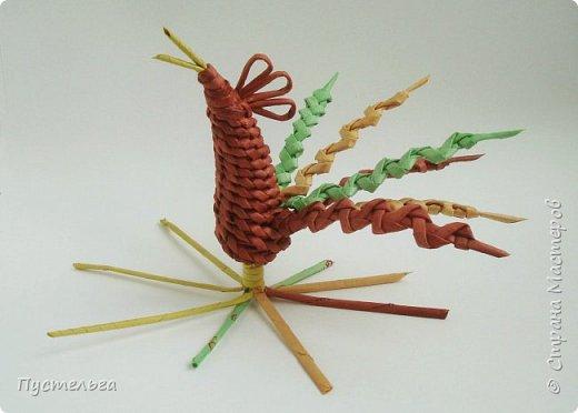 """Ещё один петушок к Новому году для любителей спирального плетения и плетения из соломки. В работе используются: газетная бумага, спицы, ножницы, плей ПВА, для окрашивания трубочек - водные морилки """"Красное дерево"""", """"Лиственница"""", зелёный колер с грунтовкой. фото 12"""