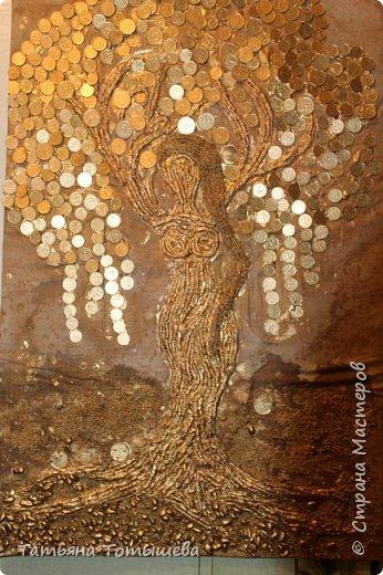 Моё денежное дерево фото 4