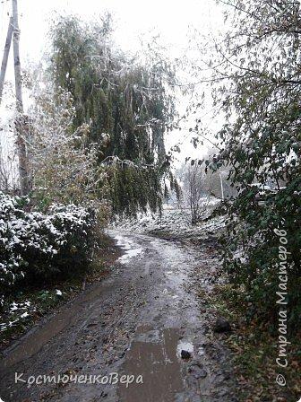 Сегодня, на самом деле, снег пошел второй раз, но теперь он лег хорошим слоем и утро выглядит свежо    и красиво. фото 9