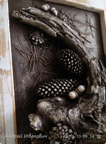Рамка деревянная (замазюканая шпатлёвкой) зачищена наждаком и вскрыта раствором ПВА Фон-ДВП А всё остальное привезено с Карпат)))))) Иголки  Коряга Шишки Жёлуди   фото 2