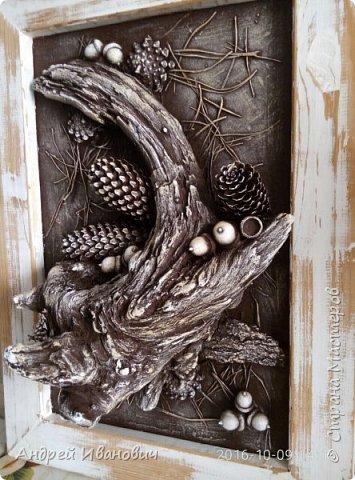 Рамка деревянная (замазюканая шпатлёвкой) зачищена наждаком и вскрыта раствором ПВА Фон-ДВП А всё остальное привезено с Карпат)))))) Иголки  Коряга Шишки Жёлуди   фото 3