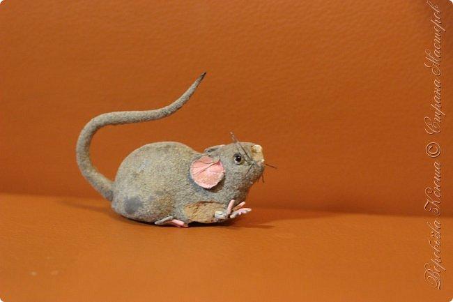 Приветствую гостей на моей страничке. Пару месяцев назад моя мама нашла у меняя в шкафу заброшеную мышь. Это был обыкновенный магнит. Был он в ужасном состоянии... фото 2