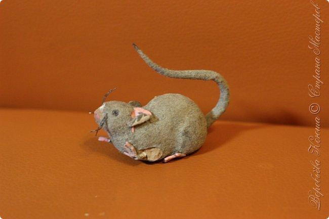 Приветствую гостей на моей страничке. Пару месяцев назад моя мама нашла у меняя в шкафу заброшеную мышь. Это был обыкновенный магнит. Был он в ужасном состоянии... фото 4