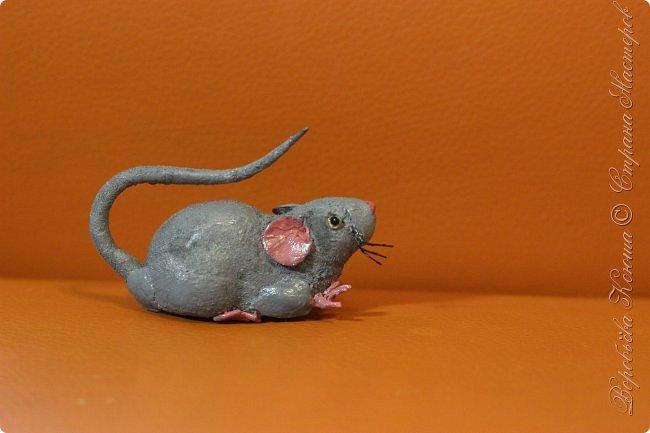 Приветствую гостей на моей страничке. Пару месяцев назад моя мама нашла у меняя в шкафу заброшеную мышь. Это был обыкновенный магнит. Был он в ужасном состоянии... фото 6